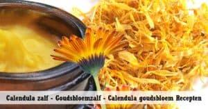 Calendula zalf - Goudsbloemzalf - Calendula goudsbloem Recepten