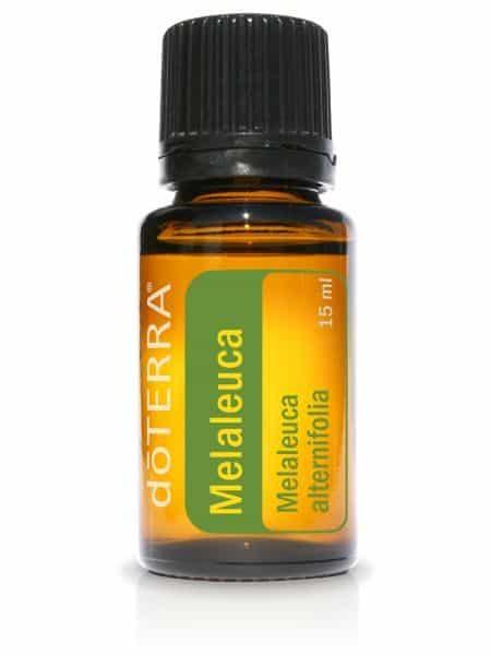 Melaleuca essentiële olie dōTERRA Tea Tree alternifolia 15ml.