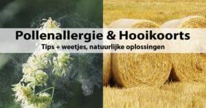 Pollenallergie & Hooikoorts - Tips + weetjes, natuurlijke oplossingen